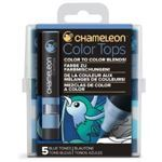 Picture of CHAMELEON 5-COLOUR TOPS BLUE TONES