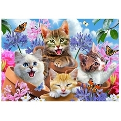 PAINTING BY NUMBERS KITTENS IN POTS 30X40